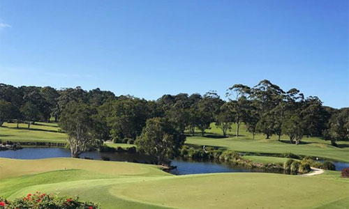 byron bay golf tours