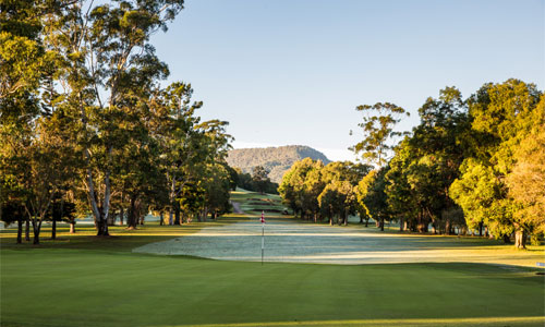 tweed coast golf courses